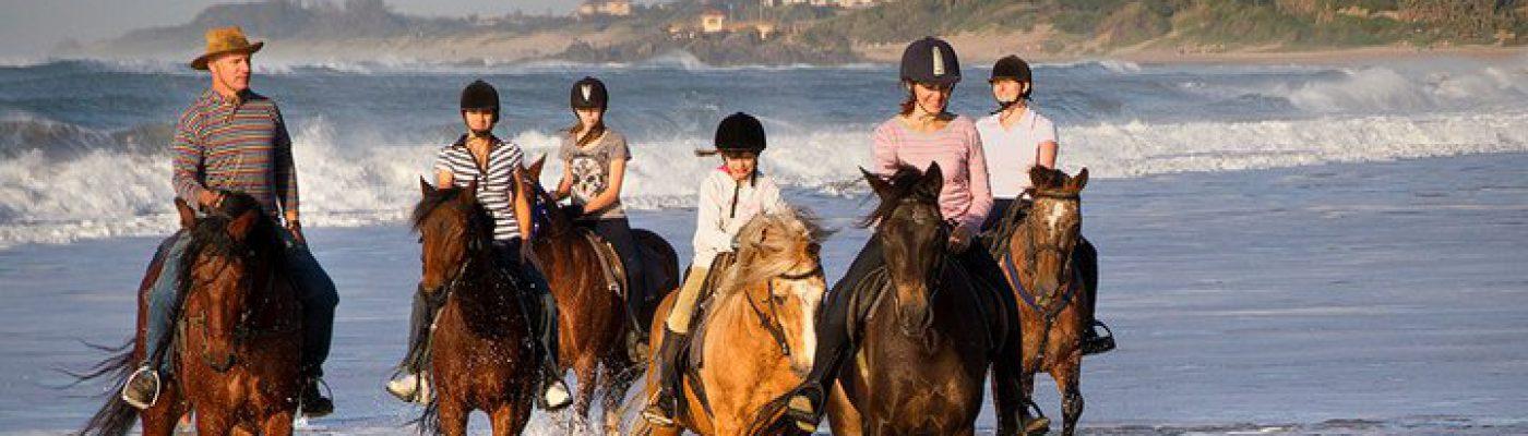 Gary's Beach Rides